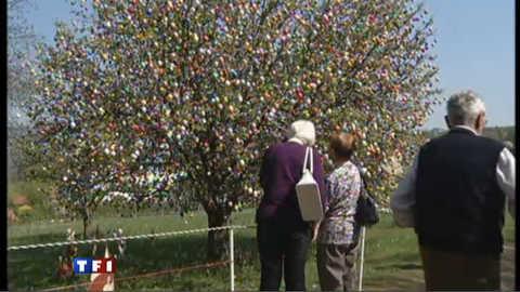 9816 oeufs de Pâques sur un arbre