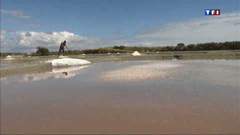 Addition salée pour les marais de Vendée