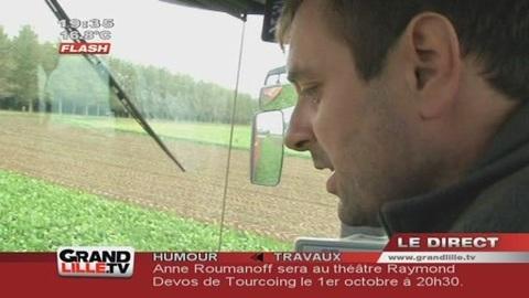 Agriculture : Betterave, une saison prometteuse (Nord)