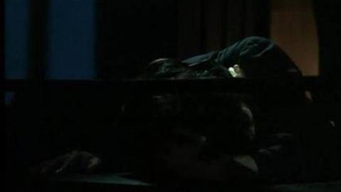Alain Bashung - Madame Reve (2014)