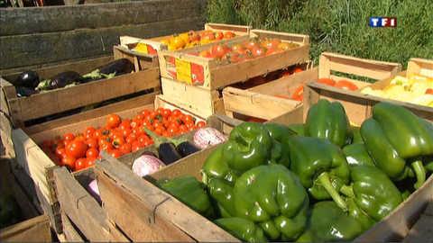 Une association aide les jeunes agriculteurs à se lancer