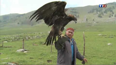 Avec les derniers éleveurs d'aigles royaux du Kazakhstan