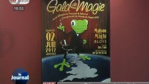 Blois capitale de la magie!