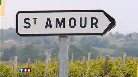 Bourgogne : tout est amour à Saint-Amour
