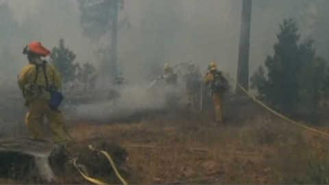 Californie : les images des nouveaux feux de forêt