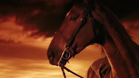 Cheval de Guerre - Bande-annonce du film de Steven Spielberg (War Horse)