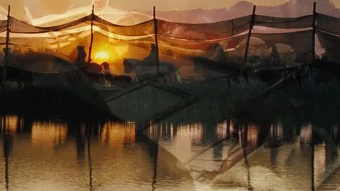 Cheval de guerre - Bande annonce 2