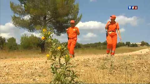 A côté de Montpellier, un comité contre les feux de forêt