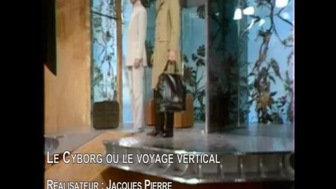 Le Cyborg ou le voyage vertical : extrait