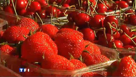 Dans les allées du marché aux fruits rouges