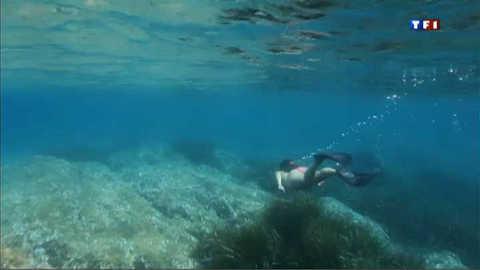 Découvrez le snorkeling, le nouveau sport sous-marin qui fait fureur