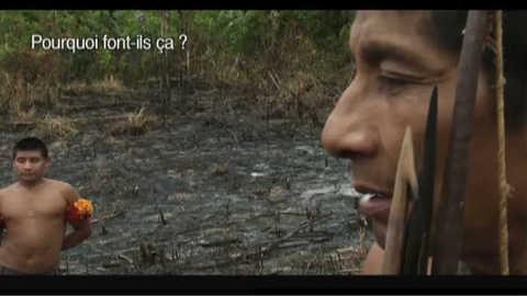 Dernière chance pour sauver le peuple Awà // Du vert sur la toile 2.33