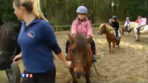 Une école pour se former aux métiers du cheval