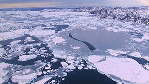 Edition spéciale du 20h au Groenland