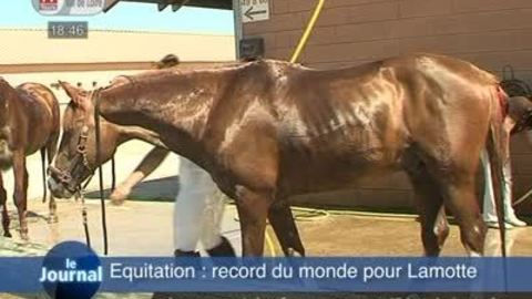 Equitation: record du monde pour Lamotte!