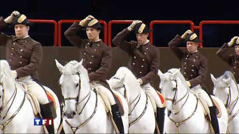 Equitation : voici un spectacle exceptionnel
