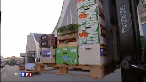 La filière allemande de fruits et légumes au bord de la faillite
