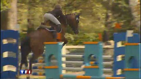 Les Français, meilleurs éleveurs de saut d'obstacle
