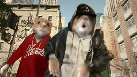 Hamster Rap: the one and only
