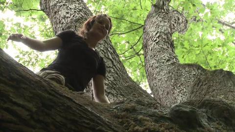 Hunger Games - Bonus DVD - Jennifer Lawrence grimpe aux arbres