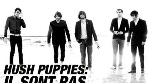 Les HushPuppies sont-ils mignons ?