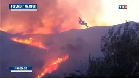 Incendie en Corse : 65 hectares ravagés par les flammes