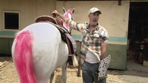 Lady Gaga in Farmville: star vs.farmer