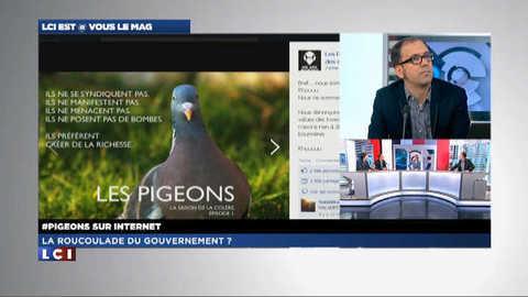 LCI EST @ VOUS le mag 1/2 : les pigeons contre le gouvernement