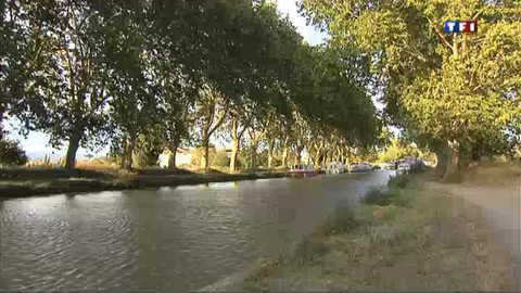Le long du Canal du Midi, un resto fait le bonheur des gourmands