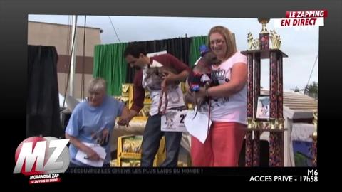 Morandini Zap : Le concours du chien le plus moche
