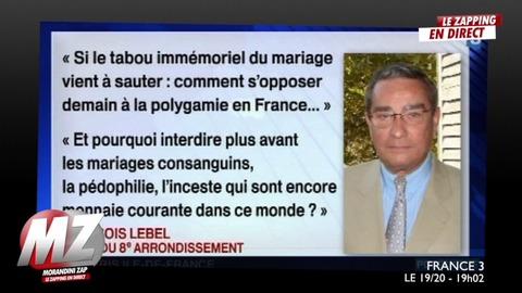 Morandini zap : François Lebel, propos homophobe
