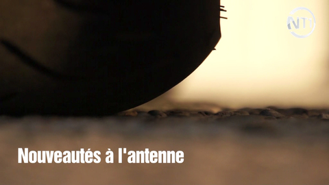 Moto GP : Laurent Cor