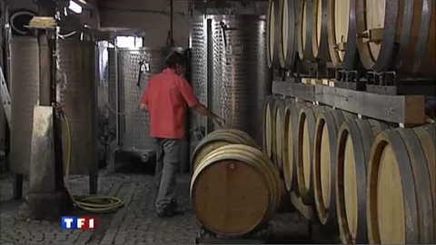 La passion du vin : les vignerons du Bas-rhin