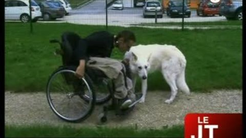 Une pension animalière pas comme les autres (Haute-Savoie)