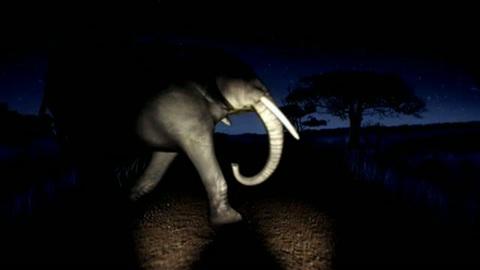 Pub Citroen Elephant 8s