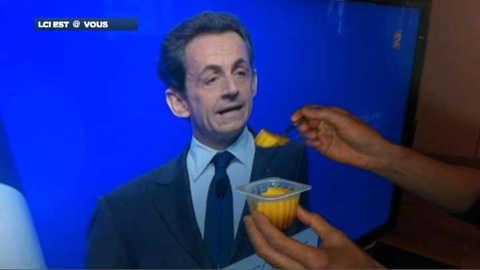 Au revoir Sarkozy : les parodies sur internet