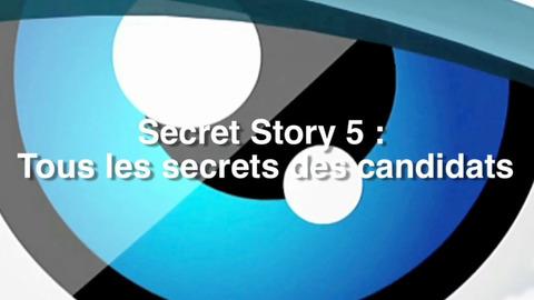 Secret Story 5 : Les secrets des candidats
