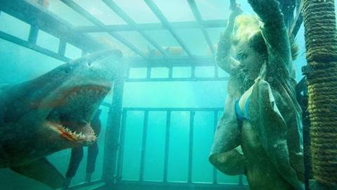 Shark 3D - Bande-annonce 2  VF