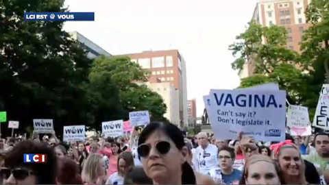 """""""Vagin"""", le mot qui choque les élus du Michigan"""
