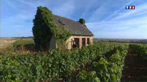 Vignobles du Centre-Loire : Menetou-Salon prend son temps