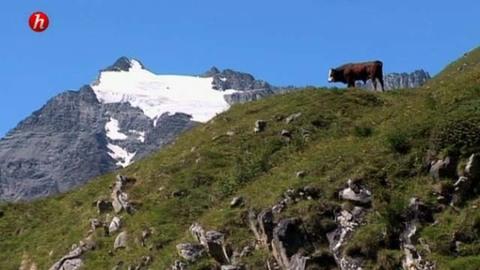 Vive la patrimoine : la Savoie