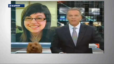 Le ZapNet du jeudi 26 avril 2012